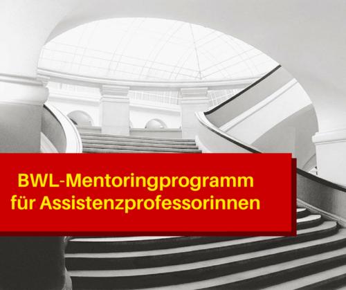 BWL-Mentoring für Assistenzprofessorinnen